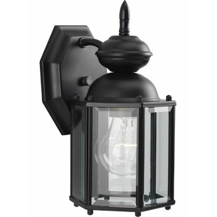 Alcott Hill Triplehorn 1 Light Wall Lantern