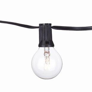 Aspen Brands 100-Light Globe String Lights