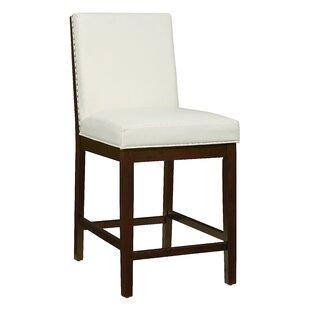 Latitude Run Kirby Side Chair (Set of 2)