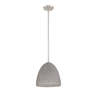 Celaya 1-Light Cone Pendant by Wrought Studio