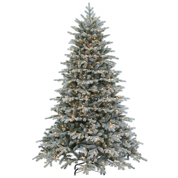 sterling inc natural cut flocked vermont 75 white spruce artificial christmas tree with 900 clear lights with stand reviews wayfair - White Spruce Christmas Tree