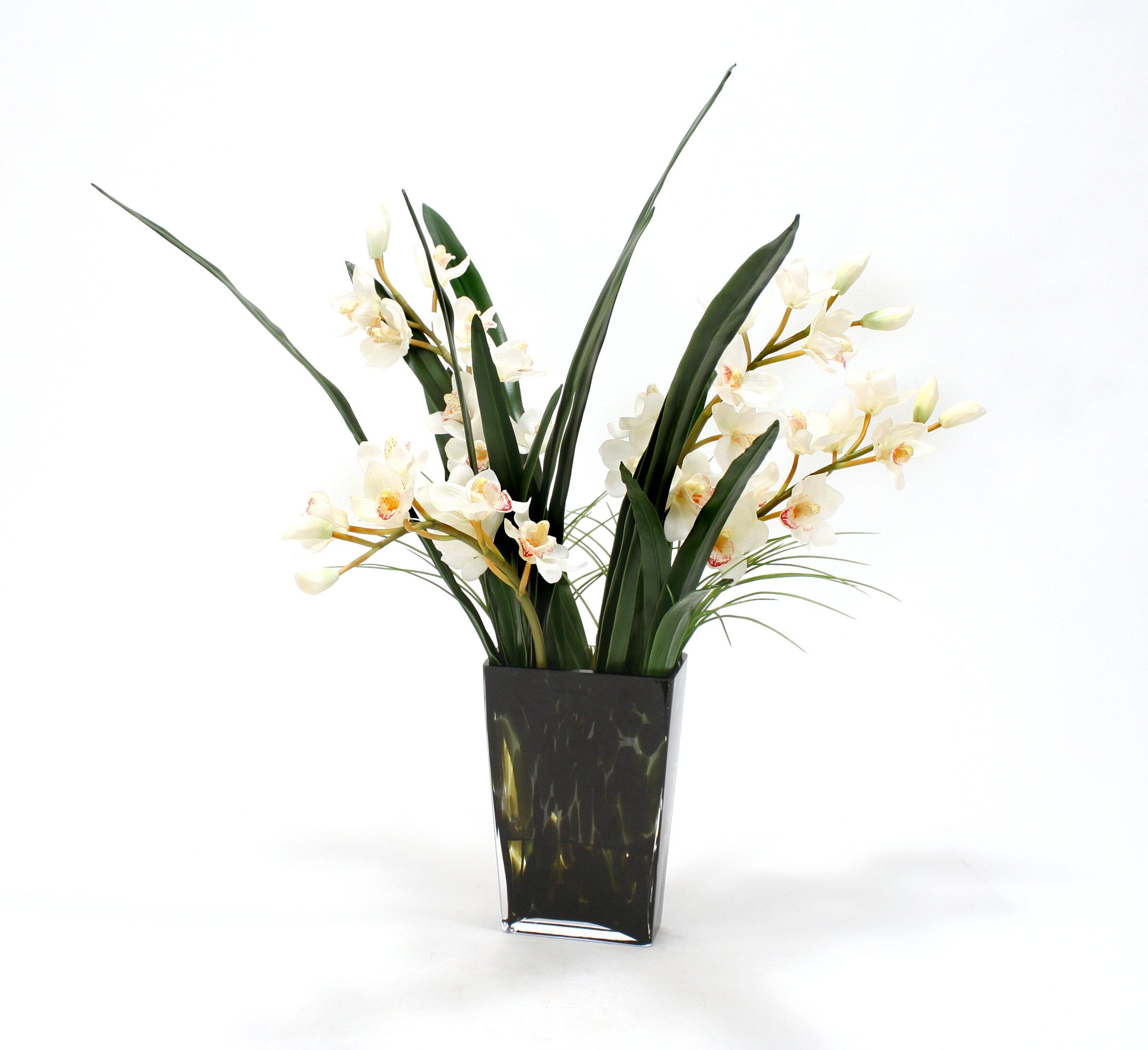 Primrue Waterlook Orchids In Spotted Leopard Glass Vase Wayfair