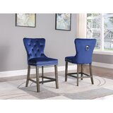 Thatcham 24 Bar Stool (Set of 2) by Everly Quinn