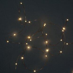 Wide Angle LED Mini By The Seasonal Aisle