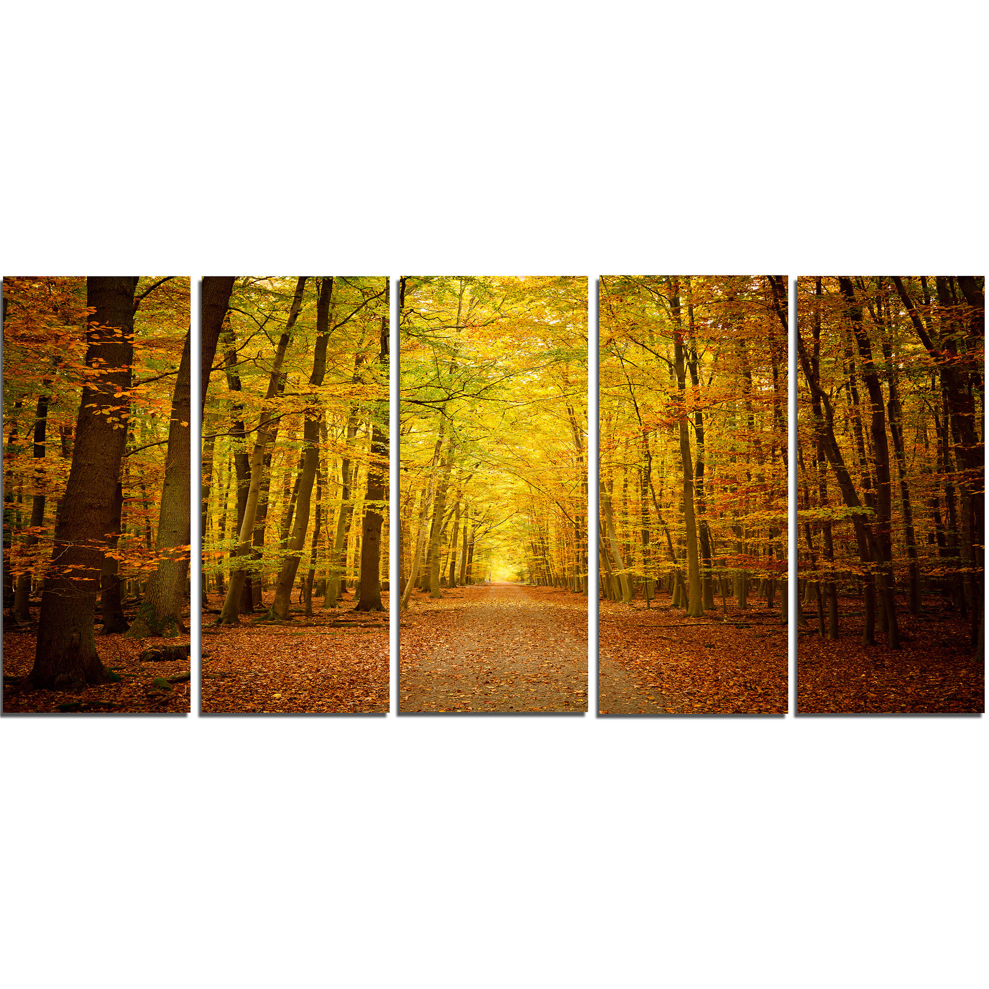 DesignArt Pathway in Green Autumn Forest 5 Piece Wall Art on Wrapped ...