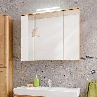 Remik 80 Cm X 68 Cm Surface Mount Mirror Cabinet With Lighting By Belfry Bathroom
