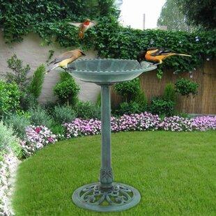 Zeny Pedestal Birdbath
