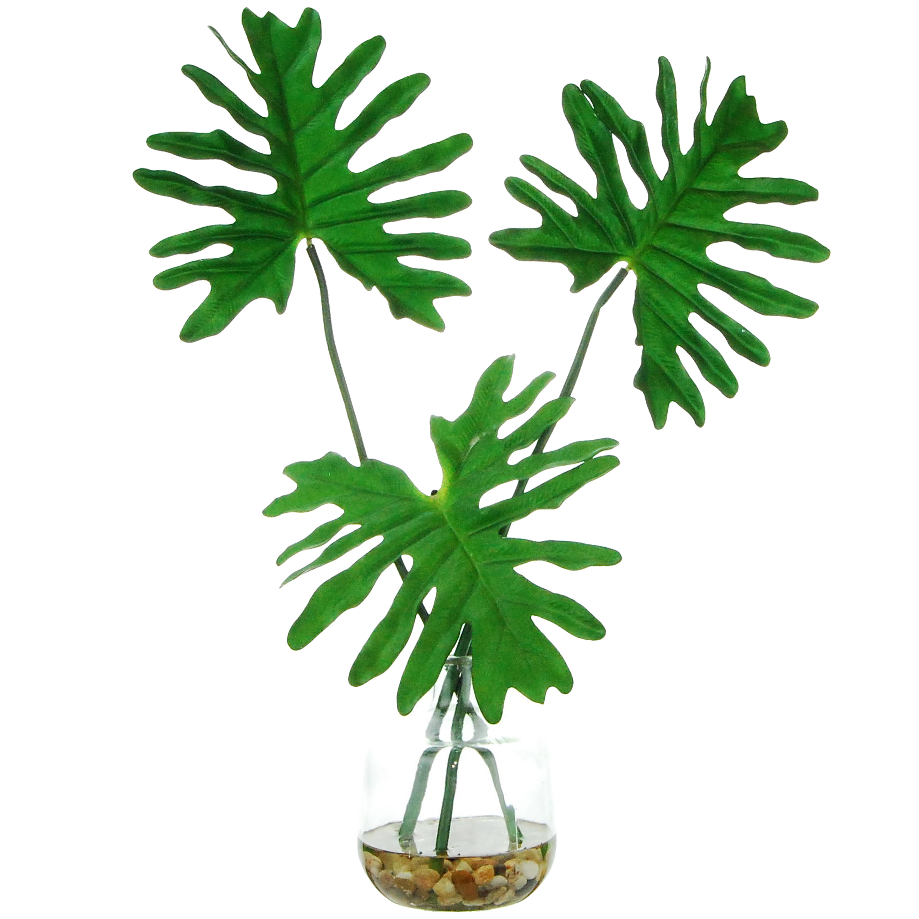 Bay Isle Home Tropical Leaves Desktop Foliage Plant In Clear Glass Vase Reviews Wayfair Download in under 30 seconds. tropical leaves desktop foliage plant in clear glass vase