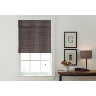 Privacy Gray Brown Roman Shade