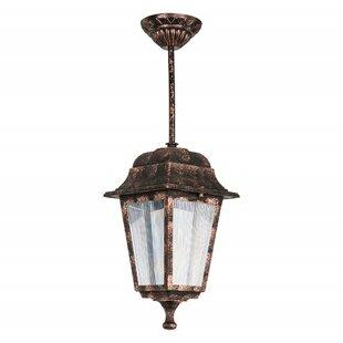 Goldia 1 Light Outdoor Hanging Lantern By Rosalind Wheeler