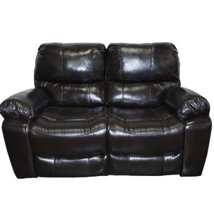 Carraton Modern Leather Reclining Loveseat