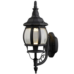 Diederich 1-Light Outdoor Glass Shade Wall Lantern