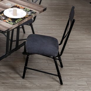 Carvell Industrial Water Pipe Solid Wood Dining Chair (Set of 2) 17 Stories