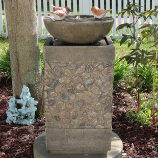 Darby Home Co Ike 3 Bathing Birds Outdoor Water Fountain Lighted Birdbath