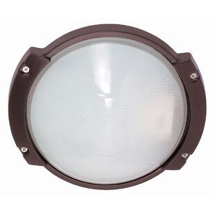 Reviews Yanira Oblong 1-Light Outdoor Flush Mount By Williston Forge