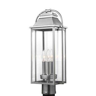 Shekar 3-Light Lantern Head by Gracie Oaks