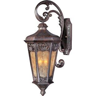 Wimbish 3-Light Outdoor Wall Lantern By Fleur De Lis Living