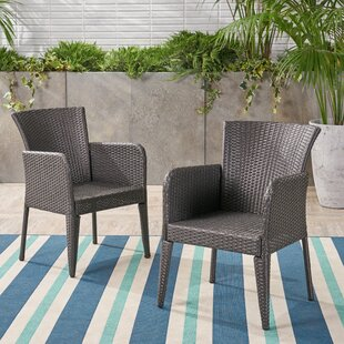 Eliason Outdoor Wicker Patio Dining Chair (Set of 2)