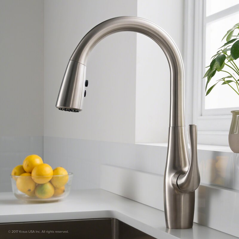 Esina Pull Down Single Handle Kitchen Faucet