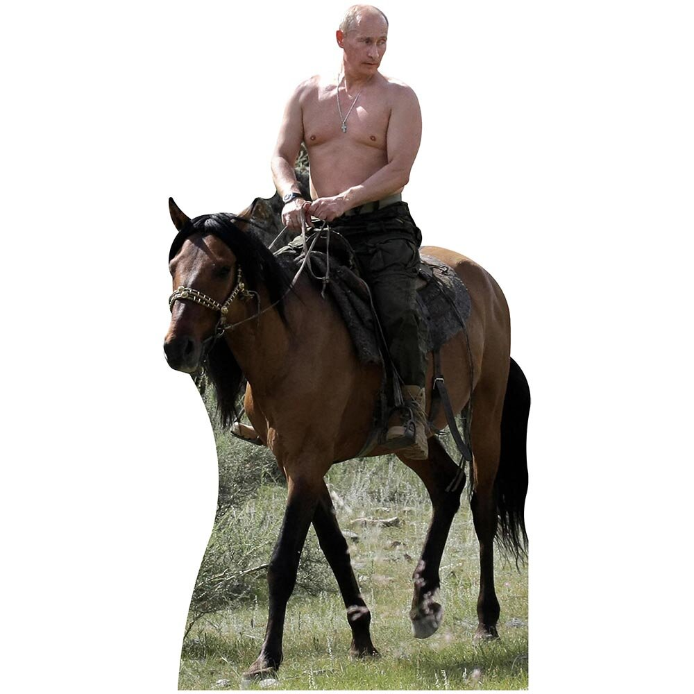 Wet Paint Printing Shirtless Putin Riding Horse Cardboard Standup Wayfair