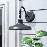 Manuela Black 11'' H Outdoor Barn Light