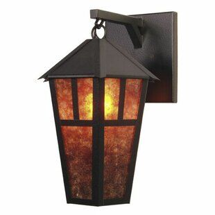 Beale 1-Light Outdoor Wall Lantern by Loo..