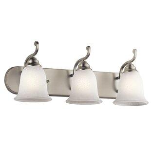 Alcott Hill Haffenreffer 3-Light Vanity Light