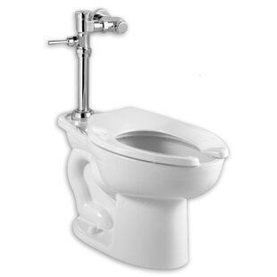 Madera Elongated System Manual Flush Valve Dual One Piece Toilet Seat Included
