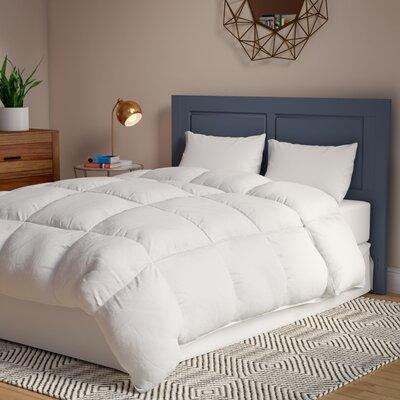 Alwyn Home Overfilled Oversized All Season Down Alternative Comforter by Alwyn Home