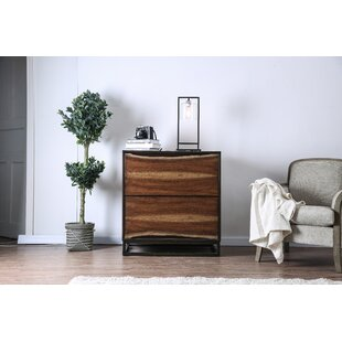 Odysseus 2 Drawer Chest by 17 Stories