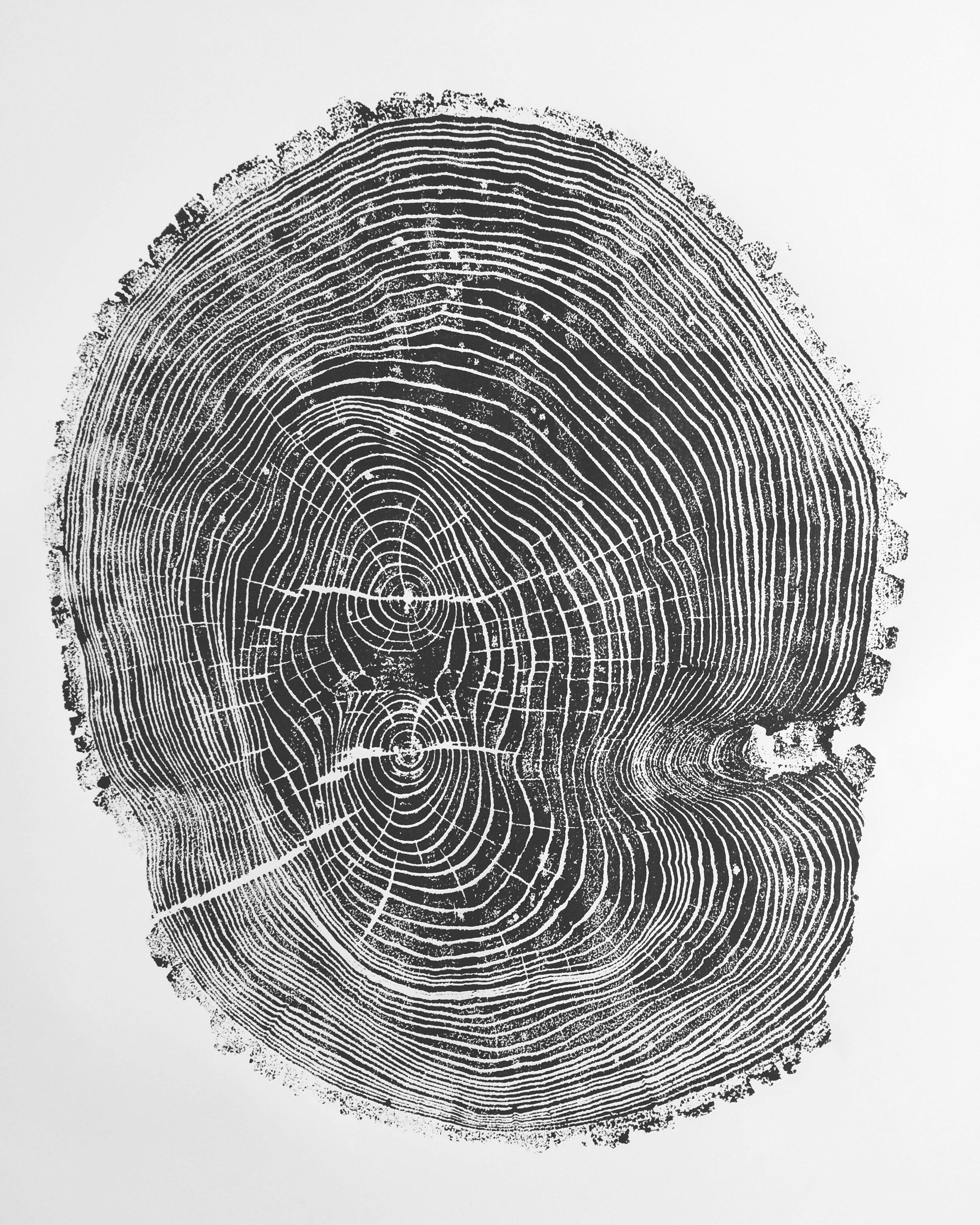 Lintonart Origional Handmade Woodblock Print Of Tree Ring From