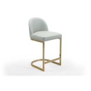 Tuscola 23.25'' Bar Stool (Set of 2) by Everly Quinn