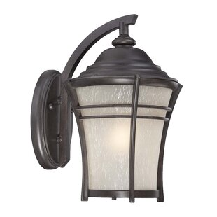 Petersen 1-Light Outdoor Wall Lantern