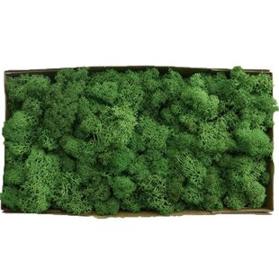 30cm Artificial Moss Topiary Image