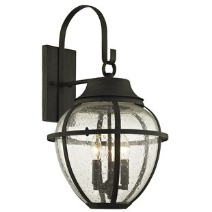 Diallo 3-Light Outdoor Wall Lantern