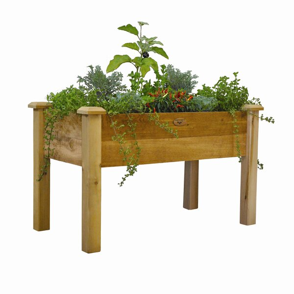 Raised Garden Beds Elevated Planters You Ll Love In 2020 Wayfair Ca