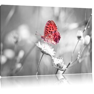 Beautiful Butterfly On A Flower Wall Art On Canvas