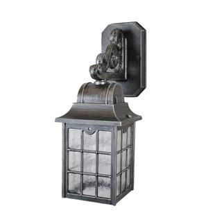 Archard 1-Light Outdoor Wall Lantern