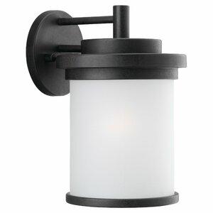 Dashiell 1-Light Glass Shade Outdoor Wall Lantern