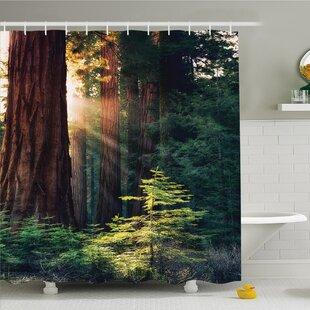 Best Price National Parks Home Morning Sunlight in Wilderness Yosemite Sierra Nevada Nature Art Shower Curtain Set ByAmbesonne