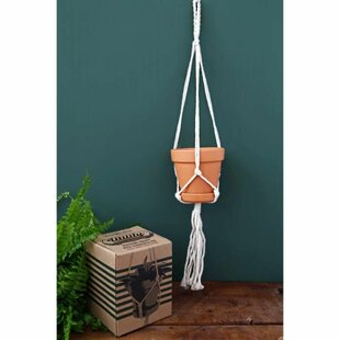 Azuela Fiberglas Hanging Planter By Freeport Park