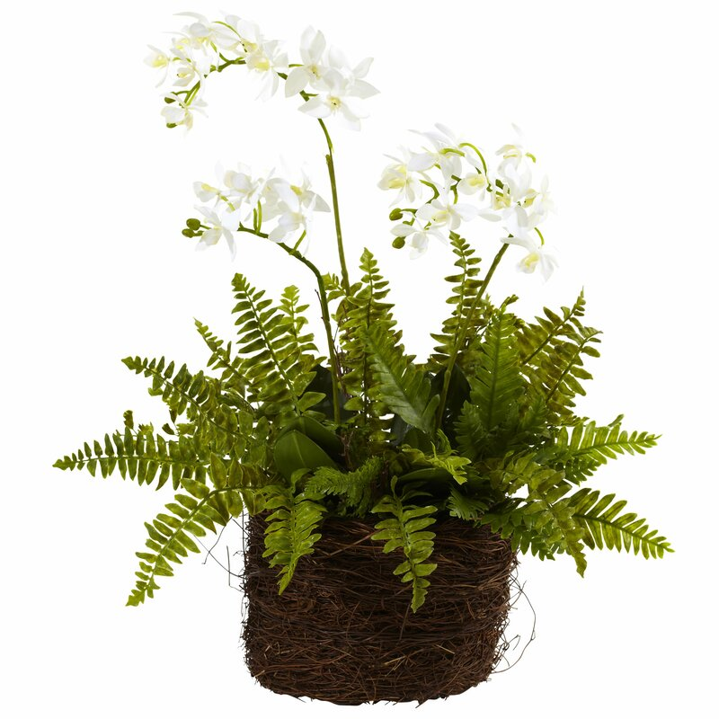 floral home decor orchid floral design wayfair.htm nearly natural mini orchids floral centerpiece in planter  mini orchids floral centerpiece