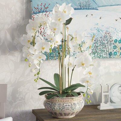 Kunstpflanze Orchideentopf   Dekoration > Dekopflanzen > Kunstpflanzen   Brambly Cottage