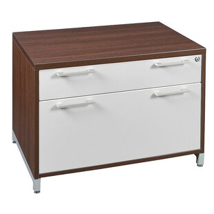 Brayden Studio Maverick 2 Drawer Low Box Lateral File