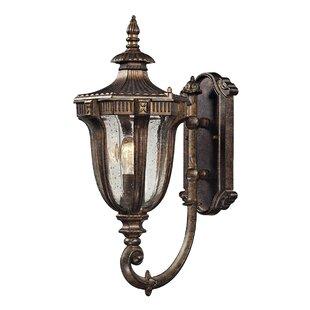 Online Reviews Morillo 1-Light Outdoor Wall Lantern By Astoria Grand