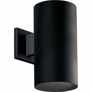 Novack 1-Light Outdoor Sconce