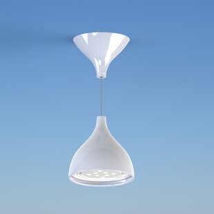 Masiero Dropop 1-Light Novelty Pendant