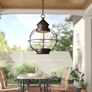 Hastings 1-Light Outdoor Hanging Lantern by Birch Lane? Heritage