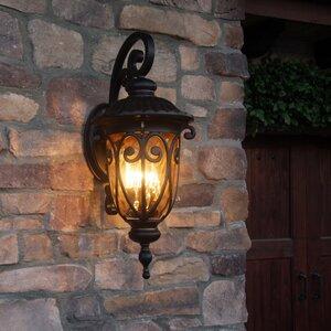 Hailee 1-Light Outdoor Wall Lantern