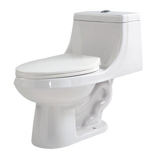 ANZZI Odin Dual Flush Elongated One-Piece..